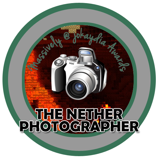 010. Nether Photographer Award