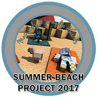 122. Summer Beach Project 2017 Icon