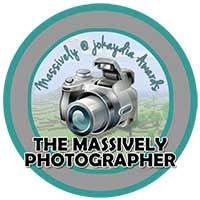 005. Massively Photographer Award Icon