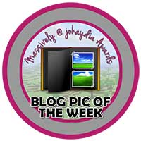 00!. Blog Pic of the Week Icon